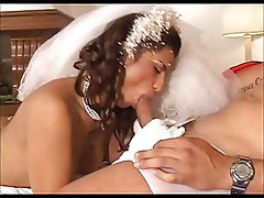 Blowjob, Brazil, Brunettes, Latina, Lingerie, Wedding