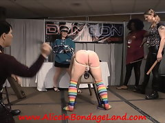 Because It's The Cup - Hockey Spanking FemDom Punishment